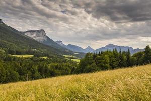 Savóia (França). montanhas chartreuse e campo de trigo