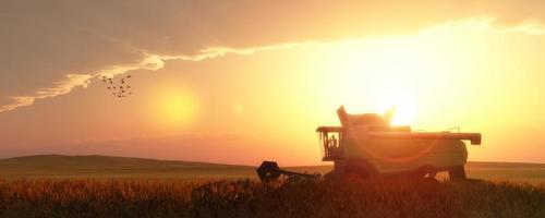 colhedora de trigo