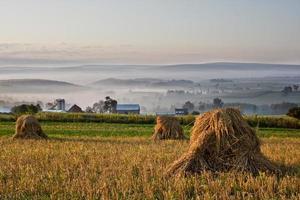 choques de trigo com vista para o vale enevoado no início da manhã
