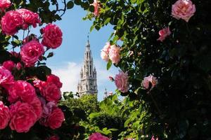 Câmara Municipal de Viena na primavera foto