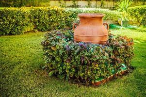 jarro velho de argila no gramado foto