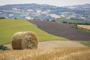 cena rural itália foto