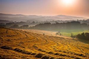paisagem toscana ao amanhecer com neblina