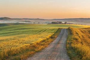 nevoeiro toscano nos campos sol, itália