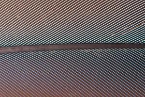 padrão de penas coloridas