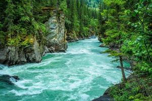 rio azul correndo por uma floresta