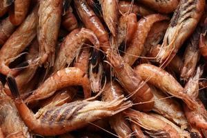camarão cozido close up foto