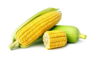 milho fresco isolado no fundo branco foto