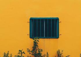 plantas ao lado de um prédio amarelo brilhante