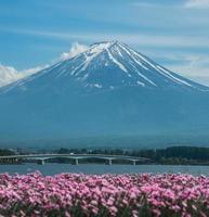 mt. Fuji foto