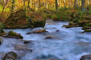 rio oirase no outono, norte do japão