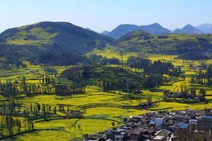 vila e campo de colza com montanha foto