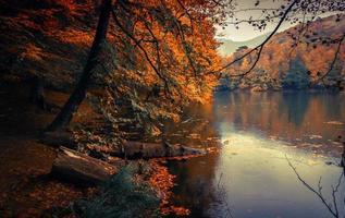 bela cena do rio de outono