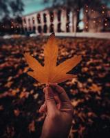 mão segurando uma folha de bordo na paisagem de outono