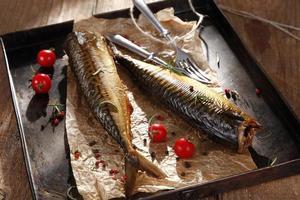 peixe defumado