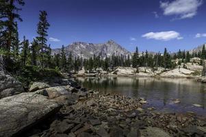 Lago do castelo na bacia selvagem