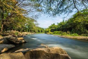 rio na floresta foto