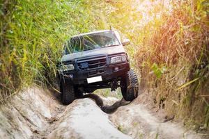 caminhão dirigindo na floresta foto