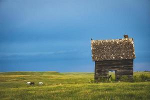 velha cabana no campo