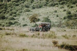 cidade do cabo, áfrica do sul, 2020 - um grupo de turistas em um safári