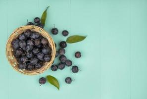vista de cima dos pequenos abrunhos de frutas escuras foto