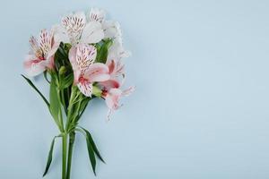 vista superior de um buquê de flores de alstroemeria rosa