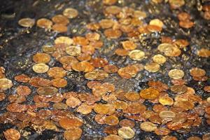 moedas de fonte foto