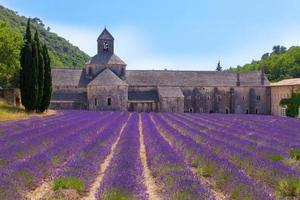 Provença mínima foto