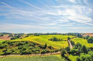 campo gramado verde sob um céu azul durante o dia