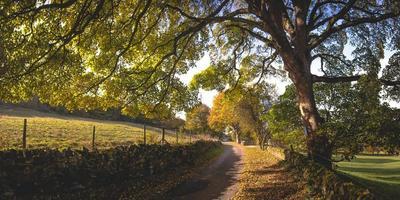 estrada de terra no campo foto
