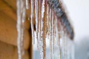 pingentes de gelo foto