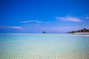 praia tropical com águas claras foto