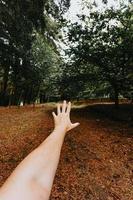 pessoa estendendo a mão em uma paisagem de outono foto