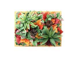 vista plana de uma moldura de madeira com lindas flores foto