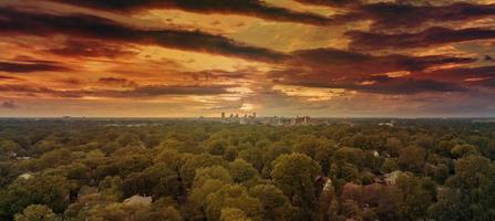 vista aérea de árvores ao pôr do sol