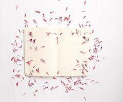 caderno aberto coberto de pétalas