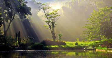 raios de luz ensolarados em um lago