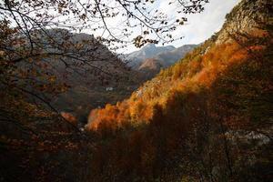 montanhas de outono na hora dourada foto