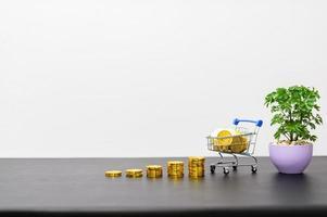 conceito de crescimento financeiro com moedas