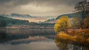 reflexo das árvores no corpo d'água foto