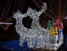 trenó com renas e luzes brancas no natal