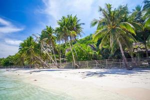 praia tropical com belas palmeiras e areia branca, filipinas foto