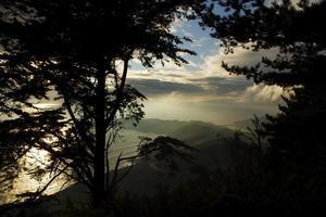 a névoa do pacífico foto