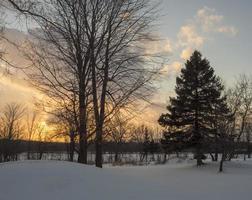 pôr do sol em uma paisagem de inverno