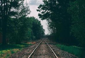 trilhos de trem cercados por árvores foto