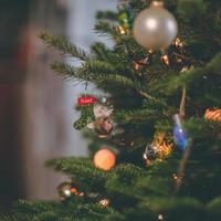 close-up de uma árvore de natal