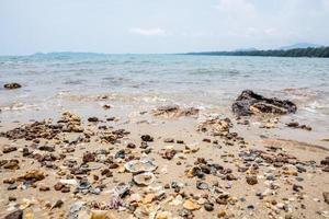 pedras e seixos em uma praia foto