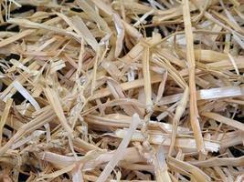 textura de palha ao ar livre foto