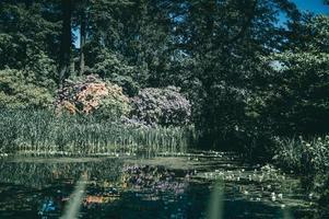 lago da letônia no verão