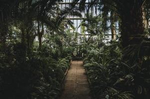 dentro de uma casa verde